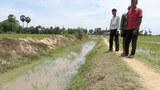 cpp-irrigation-305.jpg