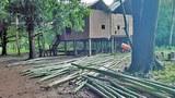 cambodia-bamboo-for-rafts-kbal-rormeas-commune-stung-treng-july20-2017.jpg