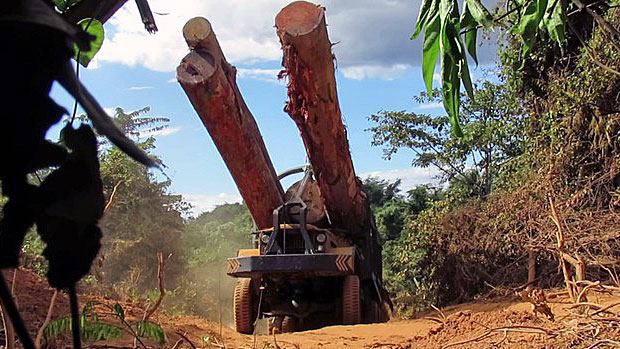 Cambodia's Agriculture Ministry Again Pledges to Stop Illegal Timber Exports