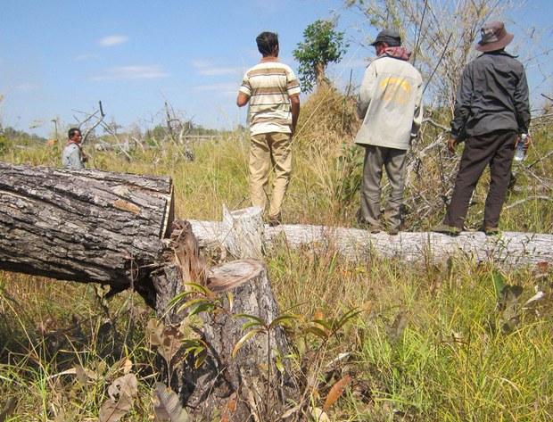 cambodia-ratanakiri-logging-feb-2014.jpg