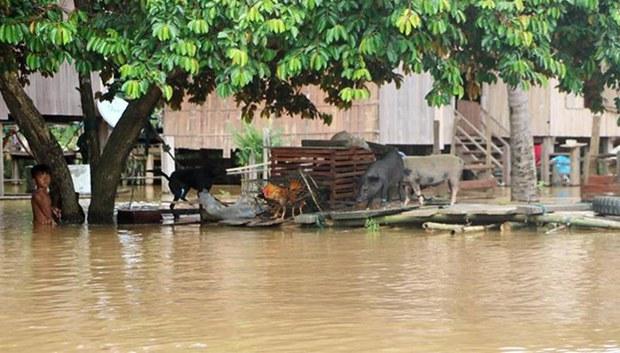 cambodia-talat-flooding-aug-2018.jpg