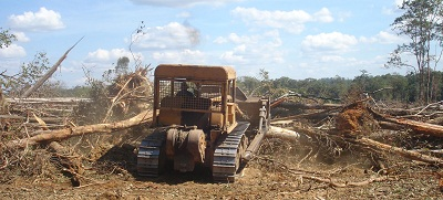 A bulldozer clears trees from the protected forest in Oyadaw district Rattanakiri province, Nov. 2012. Credit: RFA.