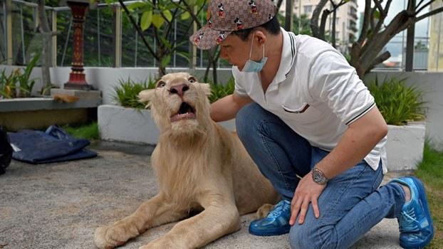 cambodia-lion-villa-phnom-penh-jul5-2021.jpg