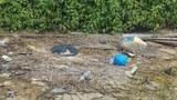khmer-litter3-022219.jpg