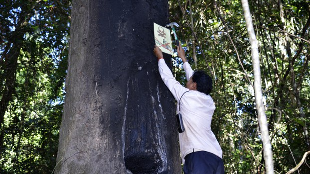 cambodia-ouch-leng-logging-sign-crop.jpg