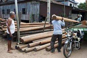cambodia-timber-305.jpg
