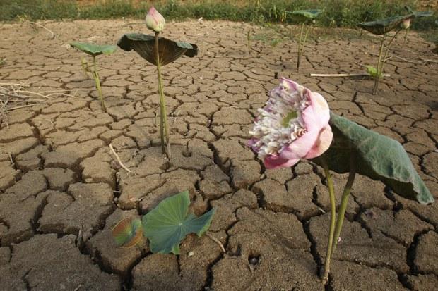 cambodia-drought-20190425