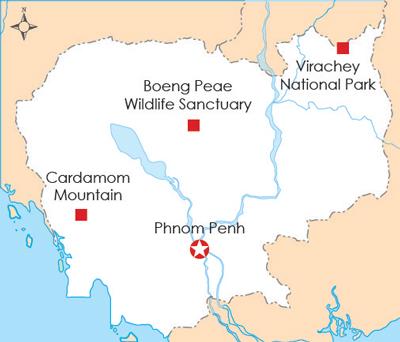 Cambodia-illegall-logging122811-400.jpg