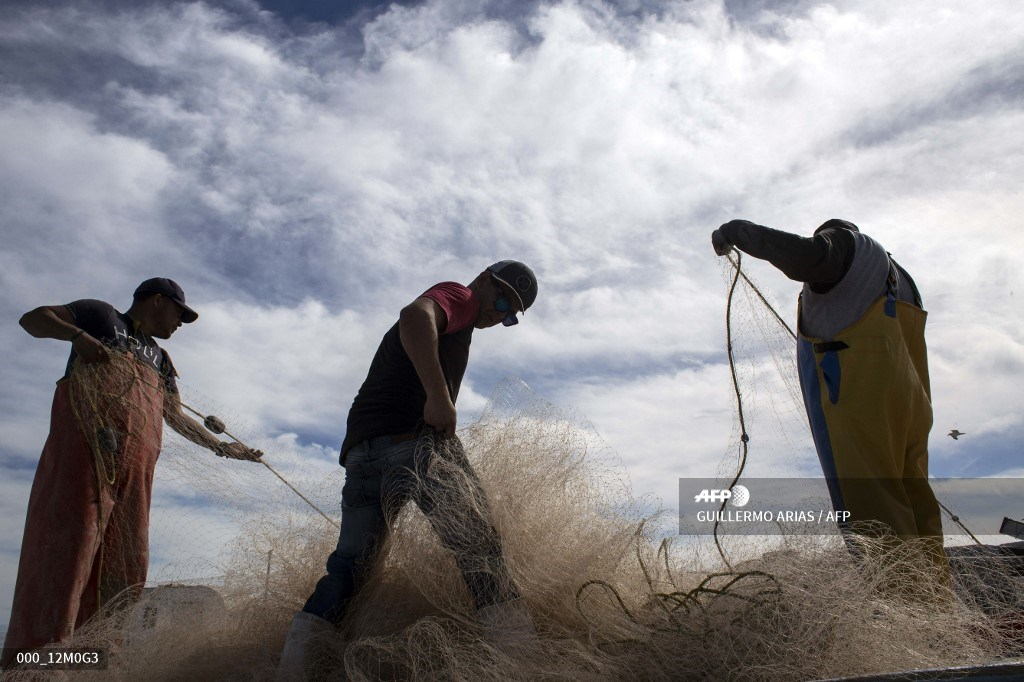 Fishermen prepare their nets at Campo Serena fishing camp, to serve China's black market demand for totoaba bladder in the Gulf of California off northwestern Mexico, March 9, 2018.