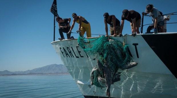 china-fishers2-092520.jpg