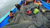 vietnam-fishing.jpg