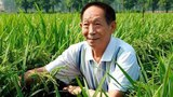 China Holds Social Media Users Over 'Insults' to Hybrid Rice Hero