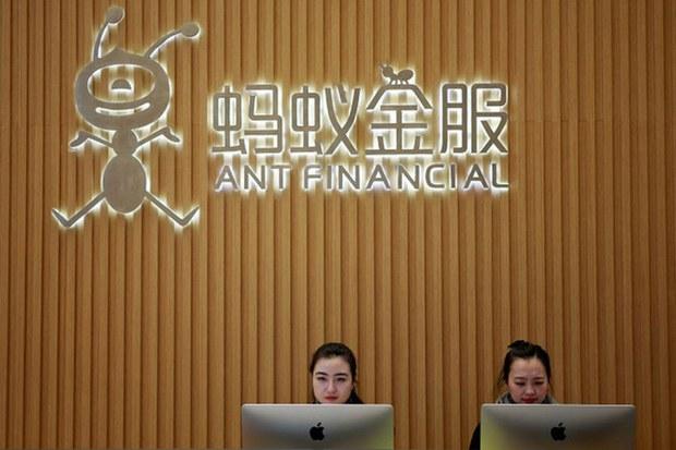 china-ant.jpg