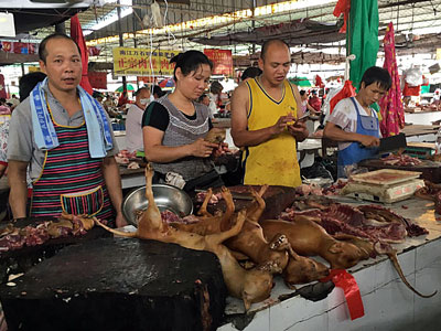 Chinese vendors stand behind a pile of dog meat at the Nanqiao market in Yulin, southern China's Guangxi region, June 21, 2017.