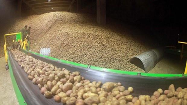 nk-food-potatoes