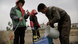 North Korea Orders Factories and Firms to Provide Farm Equipment for Harvest