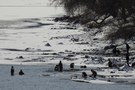 North Korea Vows Merciless Punishment for Smugglers to Stop COVID-19