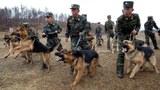 nk-military-april-2013.jpg