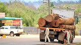laos-logging-truck-may-2015-600.jpg