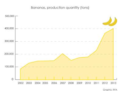 Banana production in Laos 2002-2013