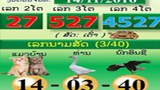 Lao Gamblers Betting on the 'Cat' Wonder Why Their Number Never Comes Up
