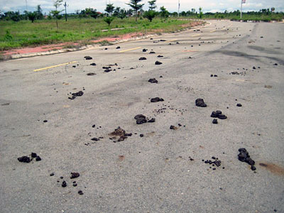 Piles of buffalo manure dot the road to the entrance of Attapeu International Airport in southeastern Laos' Attapeu province, June 2017.
