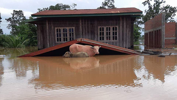 PNPC dam disaster