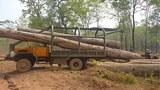 laos-timber-122817.jpg