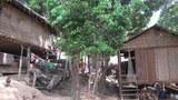 xayaburi-houses-2011.jpg