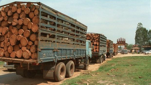 cambodia-logging-06242016.jpg