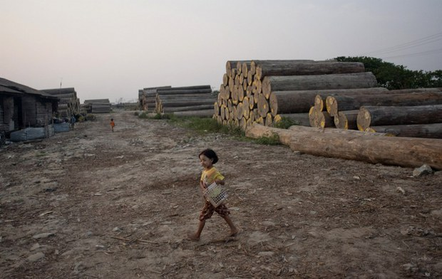 myanmar-logging-may-2014.jpg