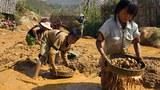 myanmar-child-labor-mogok-mandalay-mar26-2014.jpg