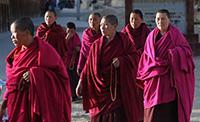 Tuibetan nuns