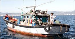 fishingboat264.jpg