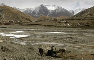tibet-glaciers-305.jpg