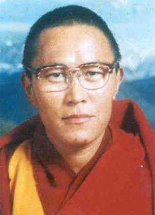 Tenzin-Delek-Rinpoche-305.jpg