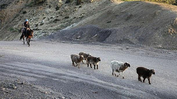 uyghur-kazakh-090817.jpg