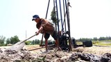 Salt Wounds Vietnam's Rice Crop