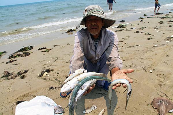 Vietnamese Fishermen Face Growing Hardship Over Contaminated