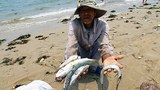 vietnam-fisherman-beach-central-province-apr21-2016.jpg