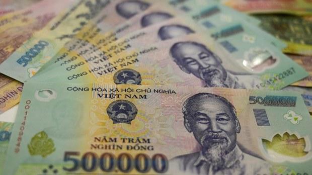 vietnam-money-crop