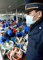 VietnamBirdflu150.jpg