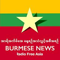 Burmese Podart