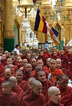 Monks protest in Rangoon. Photo: AFP