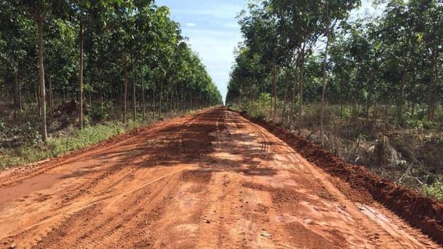 Try_Pheap_rubber_plantation_group_FB_061019.jpg