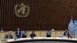 មហាសន្និបាតសុខភាពពិភពលោកលើកទី៧៣ (World Health Assembly) 2020