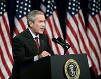 bush-200.jpg