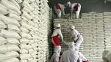 한국 정부, 북 WFP 쌀지원 사업비 연내 환수 추진