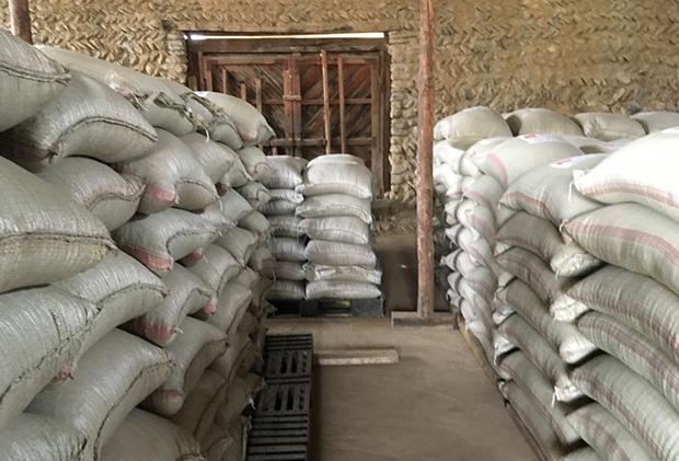 미션 이스트가 중국에서 트럭을 통해 북한으로 지원한 옥수수 384톤과 콩 28톤이4일 북한에 도착했다.