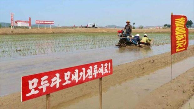 nk_farm_tractor_b